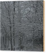 Snowfall On The Creek Wood Print