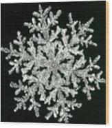 snowflake I Wood Print