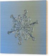 Snowflake Macro Photo - 13 February 2017 - 2 Wood Print