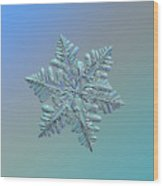 Snowflake Macro Photo - 13 February 2017 - 5 Alt Wood Print