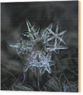 Snowflake Of 19 March 2013 Wood Print