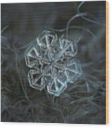 Snowflake Photo - Alcor Wood Print by Alexey Kljatov