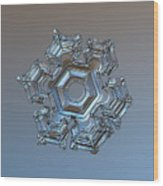 Snowflake Photo - Cold Metal Wood Print