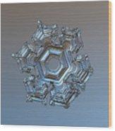 Snowflake Photo - Cold Metal Wood Print by Alexey Kljatov