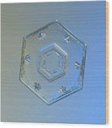 Snowflake Photo - Cryogenia Wood Print
