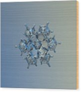 Snowflake Photo - Flying Castle Alternate Wood Print