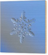 Snowflake Photo - Heart-powered Star Alternate Wood Print by Alexey Kljatov