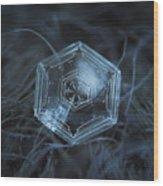 Snowflake Photo - Hex Appeal Wood Print by Alexey Kljatov