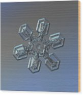 Snowflake Photo - High Voltage Wood Print by Alexey Kljatov