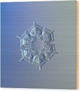 Snowflake Photo - Ice Relief Wood Print by Alexey Kljatov