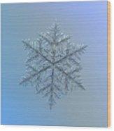 Snowflake Photo - Majestic Crystal Wood Print by Alexey Kljatov