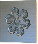 Snowflake Photo - Massive Silver Wood Print by Alexey Kljatov