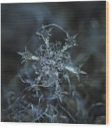 Snowflake Photo - Starlight Wood Print by Alexey Kljatov