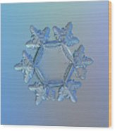 Snowflake Photo - Sunflower Wood Print by Alexey Kljatov