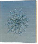 Snowflake Photo - Twelve Months Wood Print