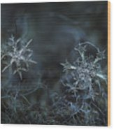 Snowflake Photo - When Winters Meets - 2 Wood Print by Alexey Kljatov