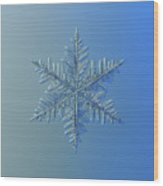 Snowflake Photo - Winter Is Coming Wood Print