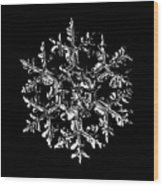 Snowflake Vector - Gardener's Dream Black Version Wood Print by Alexey Kljatov