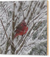 Snowing Wood Print
