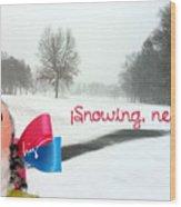 Snowing Nevando Wood Print