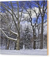 Snowman In Central Park Nyc Wood Print