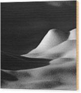 Snowscape 1 Wood Print
