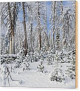 Snowscape Wood Print