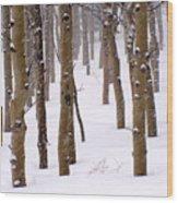 Snowy Aspen Wood Print