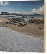 Snowy Beach Wood Print
