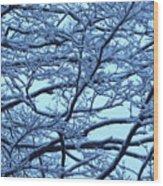 Snowy Branches Landscape Photograph Wood Print