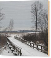 Snowy Bridge Wood Print