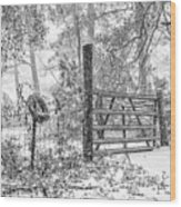 Snowy Cattle Gate Wood Print