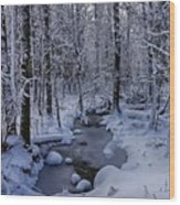 Snowy Creek Wood Print