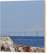 Snowy Egret And Sunshine Skyway Bridge Wood Print