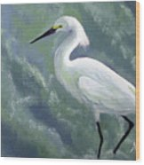 Snowy Egret In Water Wood Print