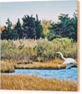 Snowy Egret-island Beach State Park N.j. Wood Print