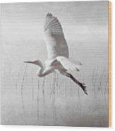 Snowy Egret Morning Bw Wood Print