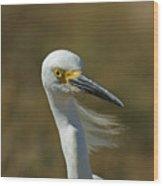Snowy Egret Profile 2 Wood Print