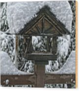 Snowy Feeder Wood Print