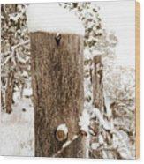 Snowy Fence Post Wood Print