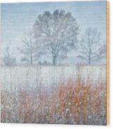 Snowy Field 2 - Winter At Retzer Nature Center  Wood Print