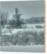 Snowy Field Wood Print