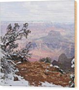 Snowy Frame - Grand Canyon Wood Print