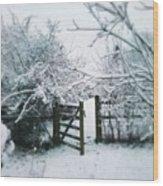 Snowy Garden Gate Three Wood Print