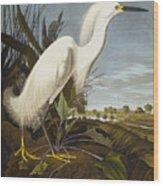 Snowy Heron Wood Print