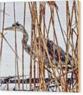 Snowy Heron? Wood Print