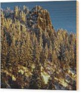 Snowy Hobart Bluff  Wood Print
