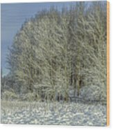 Snowy Landscape #f3 Wood Print