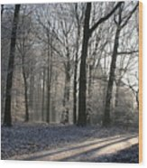 Mystical Winter Landscape Wood Print