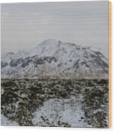 Snowy Lava Fields Iceland Wood Print
